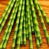Tiki Paper Straws by Kikkerland.jpg